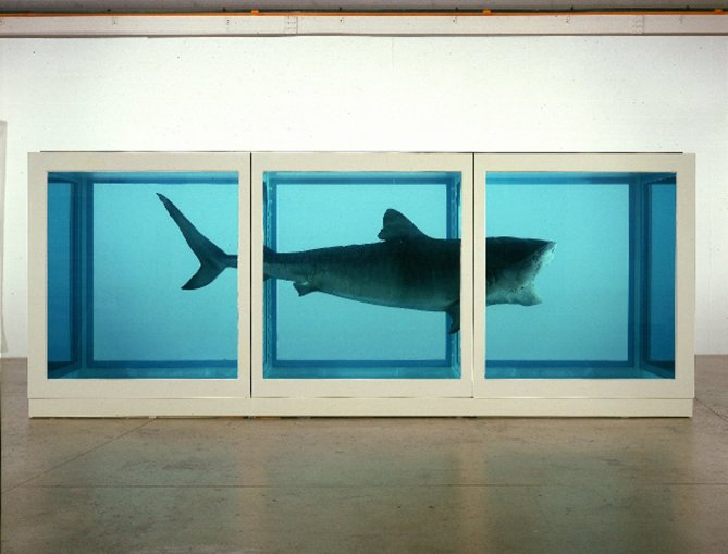 3_DamienHirst_ThePhysicalImpossibilityofDeath-7275481