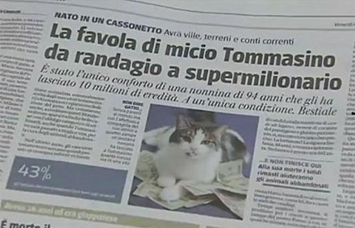 Tommasino