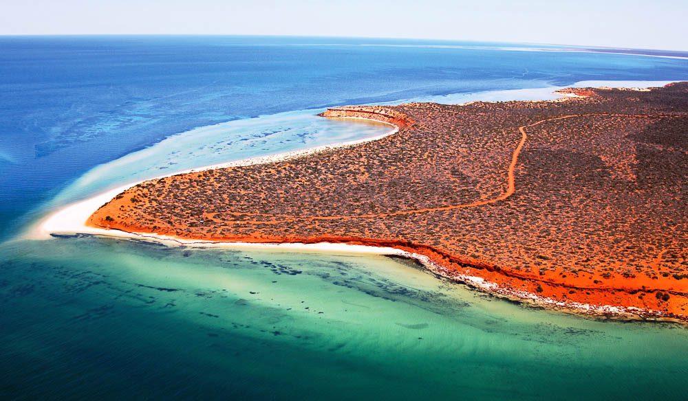 059.-Shark-Bay-Marine-Park-WA-courtesy-Australias-Coral-Coast